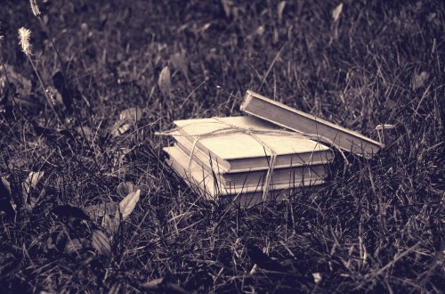books-in-the-grass